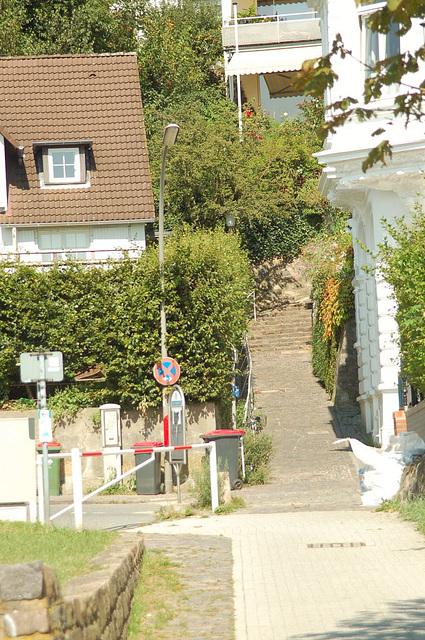 entlang der Elbe060