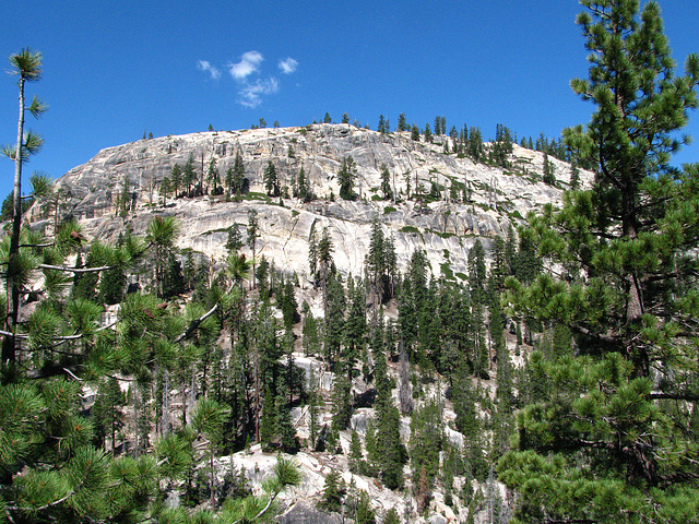View From Devil's Postpile (0529)