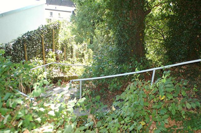 entlang der Elbe082