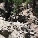 Seismic Chasm (0544)