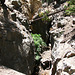 Seismic Chasm (0547)