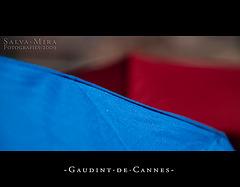 Gaudint de Cannes [ #3 ]