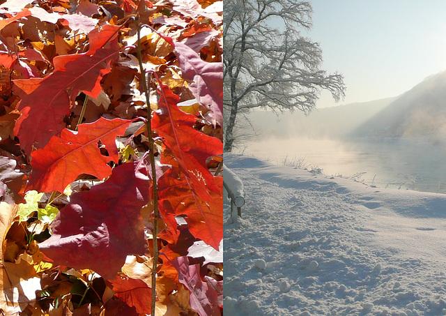 Herbst - Winter