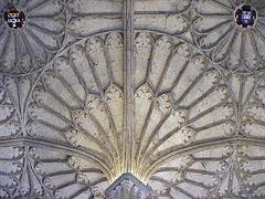Christ Church ceiling