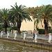 Palmoj sur promenejo - Palmen auf Promenade