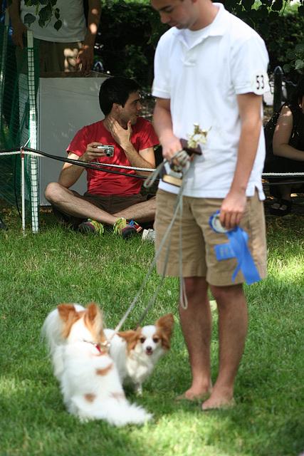 104.PrideOfPetsFunDogShow.Dupont.WDC.21June2009