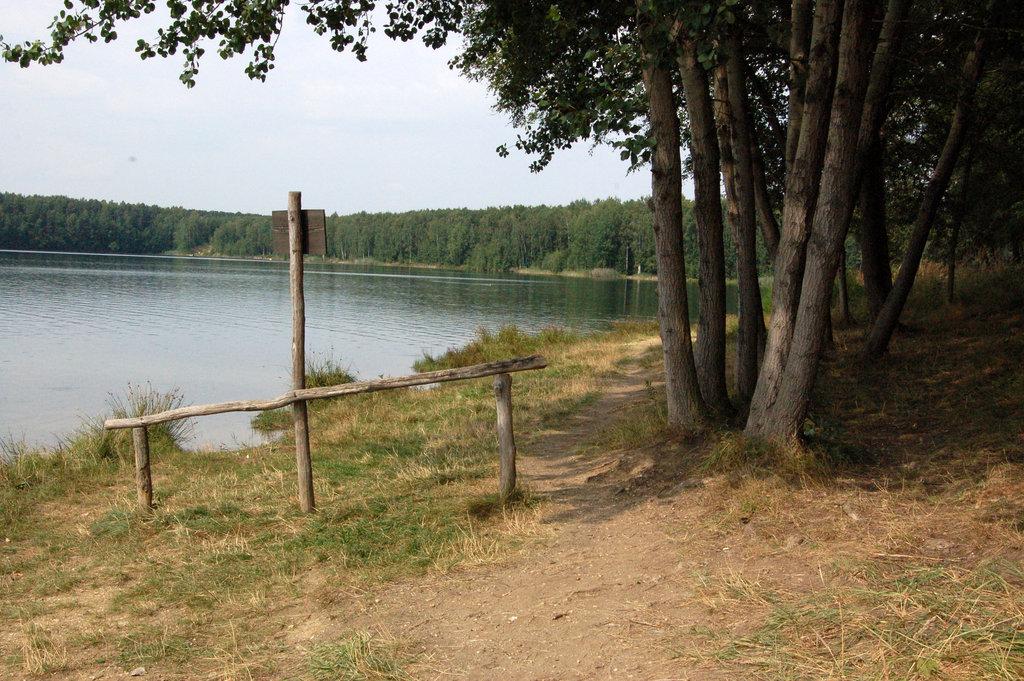 lago, vojo ĉeborda