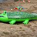 La aplomba krokodilo