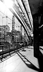 Montparnasse-7137