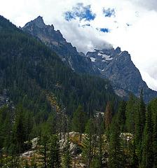 Above Jenny Lake (0570)