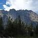 Above Jenny Lake (0648)