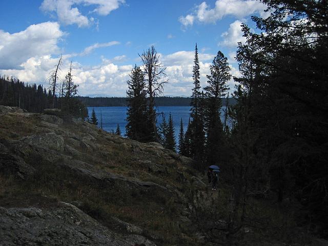 Trail to Hidden Falls (0575)