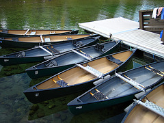 Canoes For Rent On Jenny Lake (0649)