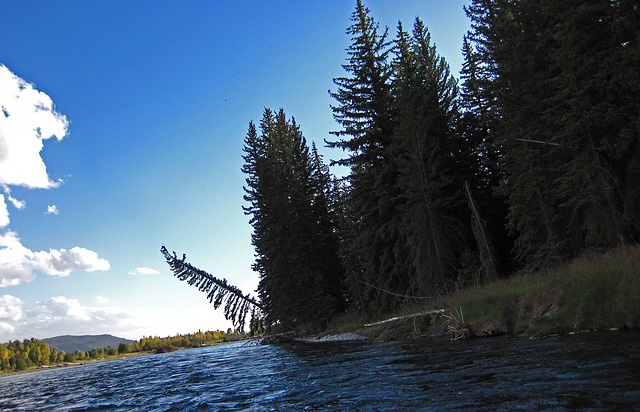 Snake River Trip (0670)