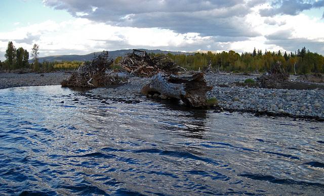 Snake River Trip (0675)