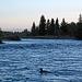 Snake River Trip (0679)