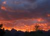 Teton Sunset (0692)