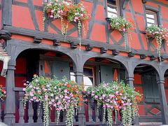 balcon et fenêtres fleuris