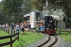 Parkeisenbahn mit Dampf