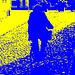 Cycliste sur pavé de cailloux /  Biker on narrow cobblestone street -  Ängelholm, Suède / Sweden.  23 octobre 2008 -  Bichromie en bleu & jaune