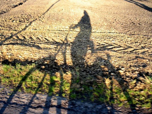la seule cycliste