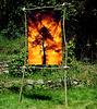 Arnes - Tuvalus Ausstellung in meinem Garten - 2.8.2009