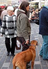 damo kun hundo - Dame mit Hund