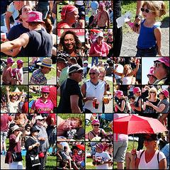 Pinkpop People 2009
