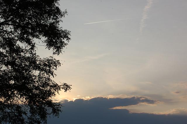 nubo vespera