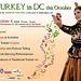 TurkishFestivalDC.MetroPoster
