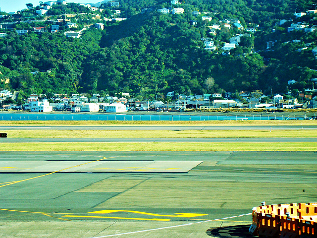 Lyall Bay from Wellington Airport