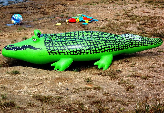 Verda krokodilo sen lernolibro