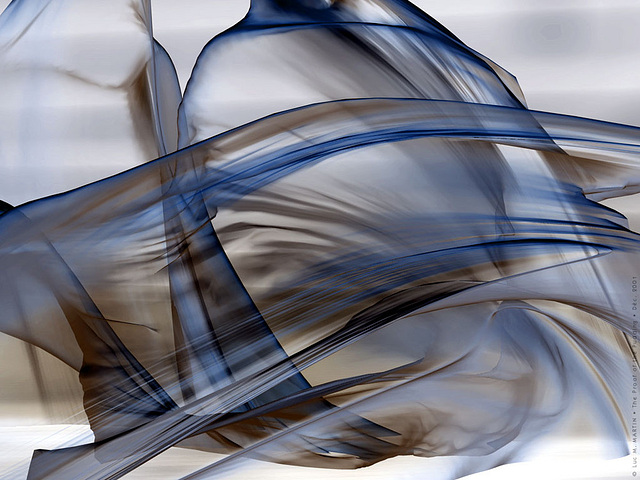 Comment séparer le danseur de sa danse ?… How to split the dancer from her dance?