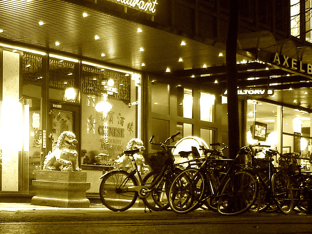 Vélos et dragons de nuit  /  Bikes & dragons night sight..   Copenhague /  Copenhagen.   25-10-2008 -  Sepia
