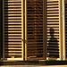 354.SolarDecathlon.NationalMall.WDC.13oct07