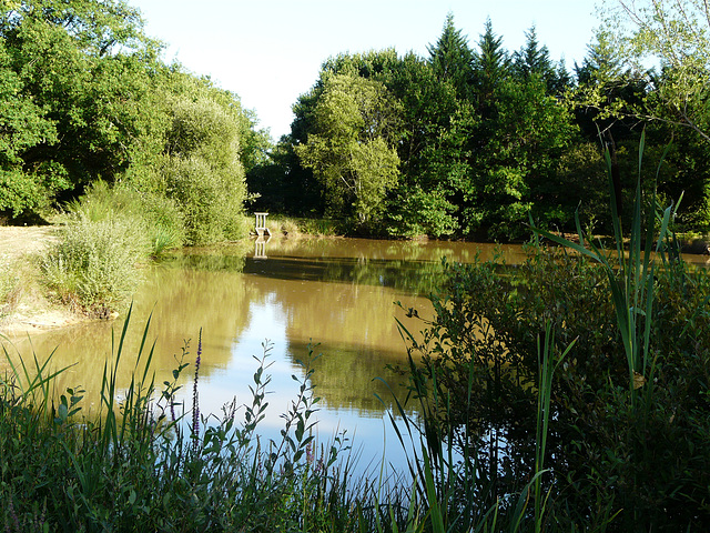 étang de verneuil