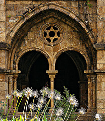 Arches and flowers