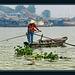 Mekong - balanced