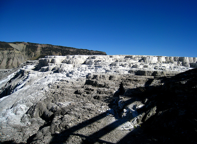 Mammoth Hot Springs (4290)