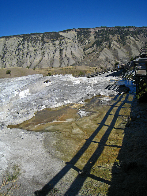 Mammoth Hot Springs (4291)