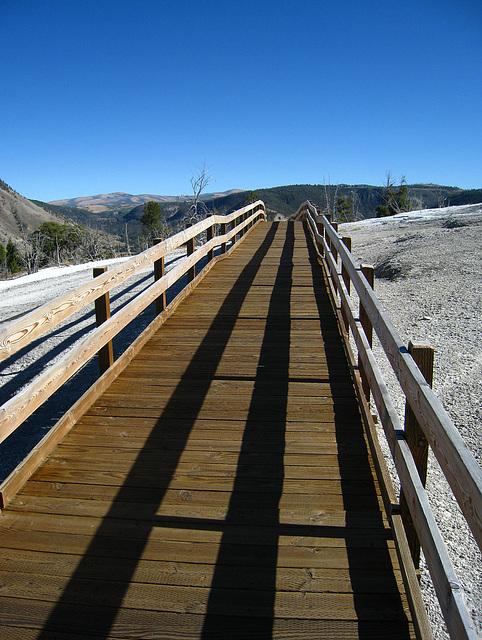 Mammoth Hot Springs Boardwalk (4294)