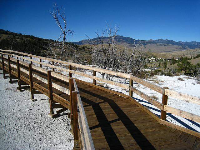 Mammoth Hot Springs Boardwalk (4295)