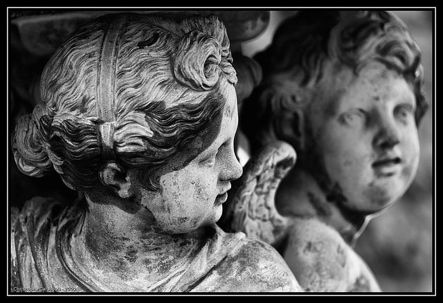 Marmousets / Cherubs fountain