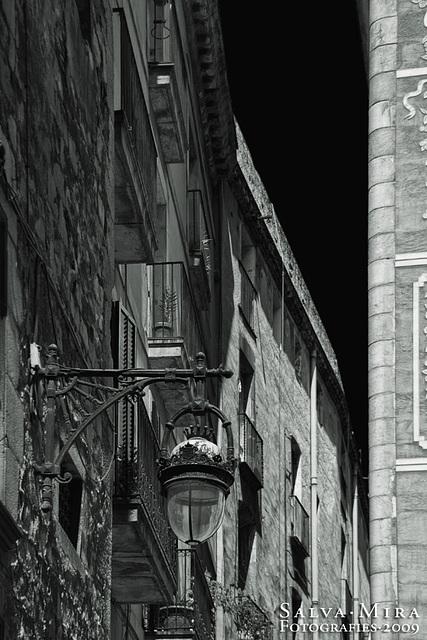 Gaudint de Barcelona [ #21 ]