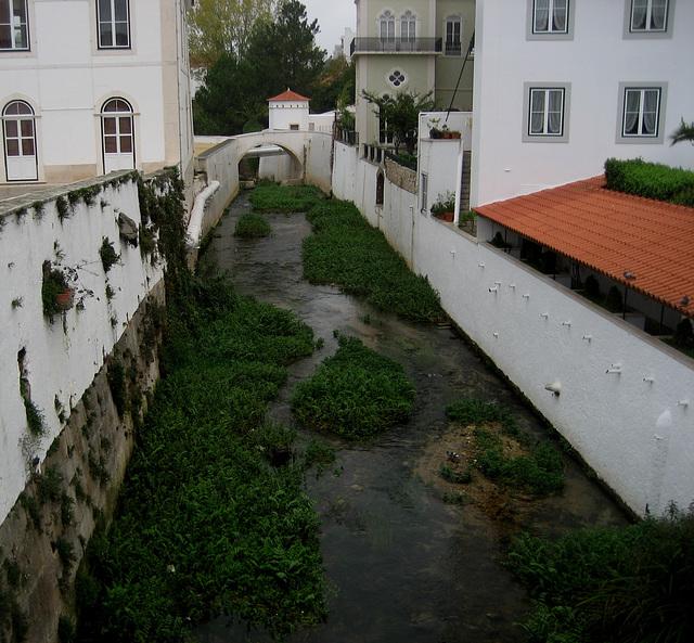 Alcobaça, River Alcoa (2)