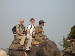Elephant ride in Kaziranga