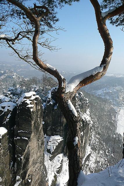 Winterliche Impressionen auf der Bastei