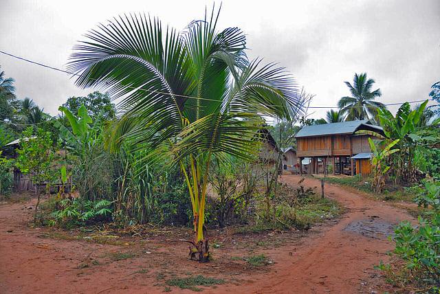 Bleary mini hamlet near Boun Tai