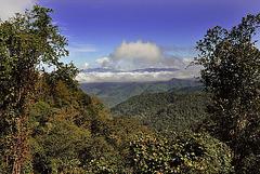 Landscape to Phongsali