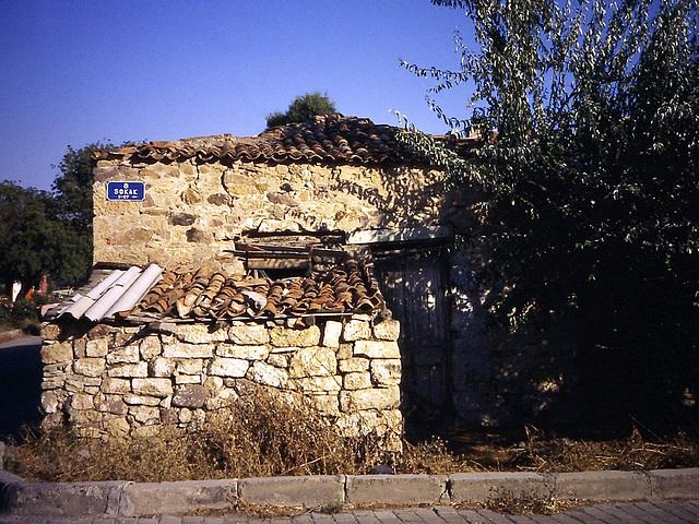 PICT0007 Steinhaus
